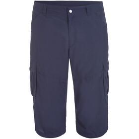 Icepeak Ep Ardoch Shorts Men, azul